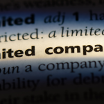 Advantages of Running a Limited Liability Company